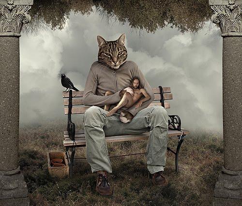 [cat+dreaming]