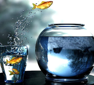 http://1.bp.blogspot.com/_jEwL4I5g1WQ/TBsS7vwZRrI/AAAAAAAAA7Q/HSsp8rijRWE/s320/Ikan-Locat.jpg
