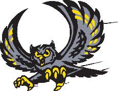 Cinema Owls Logo