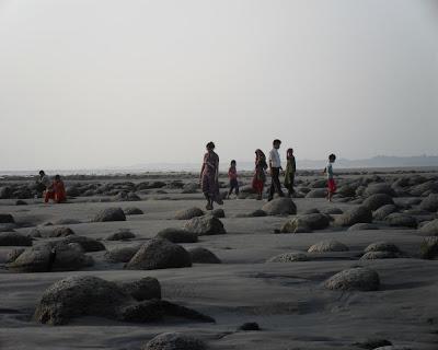 inani, beach, cox'sbazar, coral