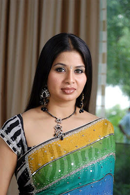 Actress Sangeetha in saree photo album