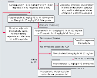 100 mg clomid day 1-5 twins
