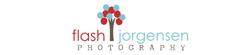 Flash Jorgensen Portrait Pricing 2012