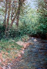 Rio Robledillo