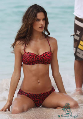 alessandra_ambrosio_hot_wallpaper_05_sweetangelonly.com