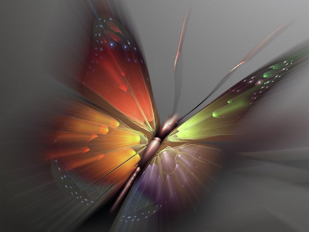 Beautiful Butterfly Art
