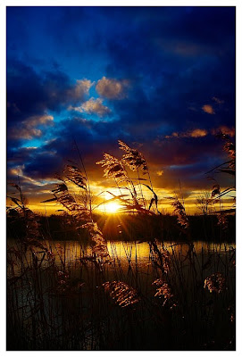 Landscape Photography, sunset, the sun