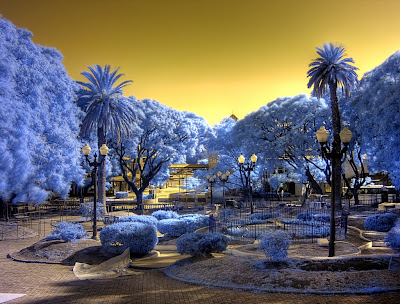 Getting-Started-with-Infrared-Photography