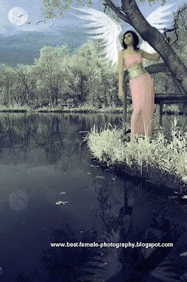 About Infrared Photography