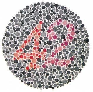 கண் - Anatomy  Eye+test+2