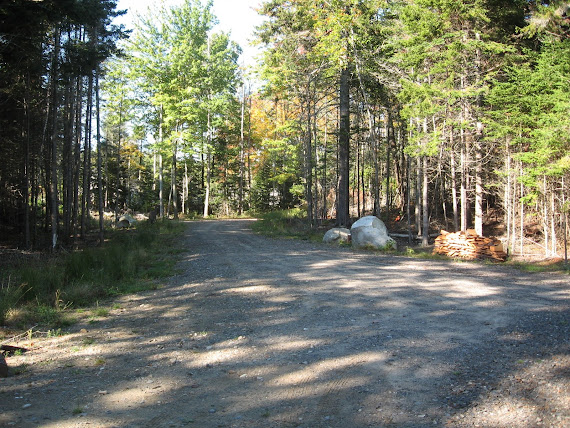 Driveway to the Cabin