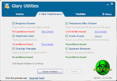 Glary Utilities Problems Found