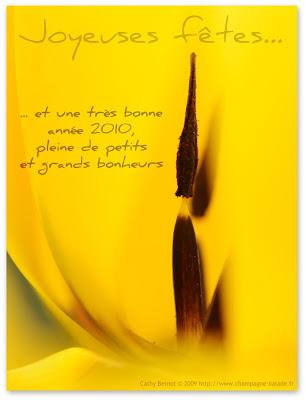 Carte de voeux bonne année 2010 photographie création originale artiste