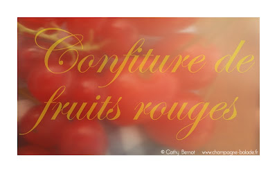 Fruits rouges du jardin