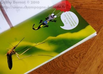 Photo publiée dans le magazine enfant nature la petite salamandre