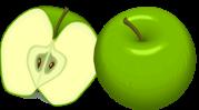 Thème de l'automne, pomme, champignon, escargot