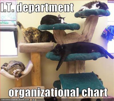 IT Organizational Chart