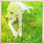 My baby girl Amelia