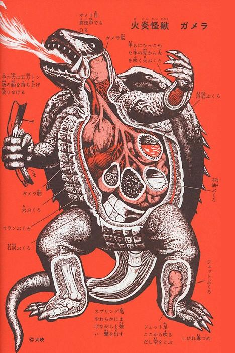 eL kOProFagO: 155# La anatomía de los Kaiju