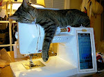 Meeko, my sewing companion