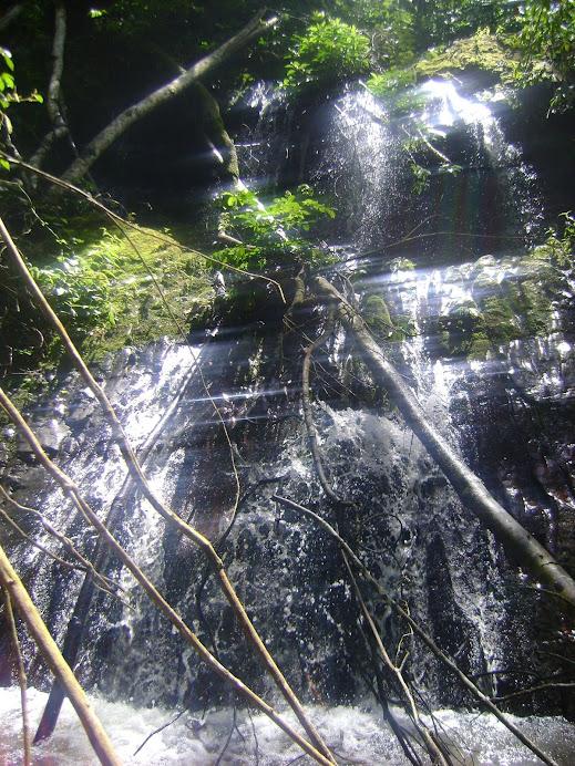 Bajo Celendin - Pangoa