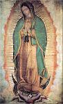 Santuario de Guadalupe EN DIRECTO