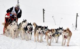 7th SLED DOG RACE