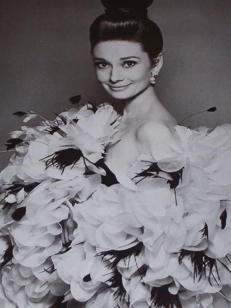 Stunning Audrey Hepburn