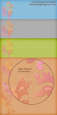 Free 2011BV FloralPapers01 Free Floral Scrapbooking Papers