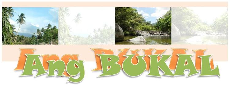 Ang Bukal