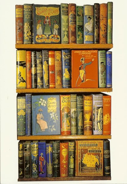 shelves of brightly covered old childrens books