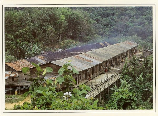 long wooden houses on stilts in jungle