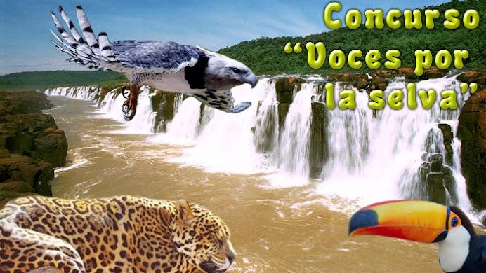 "Concurso ""Voces por la Selva"""