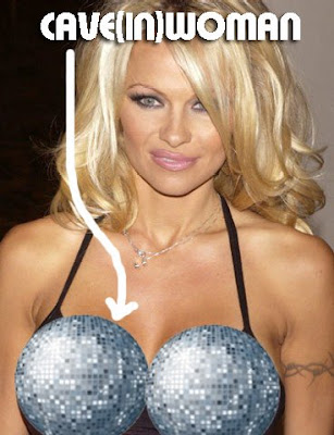 pamela andersons boobs