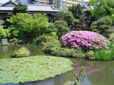 Zen Garden Japanese