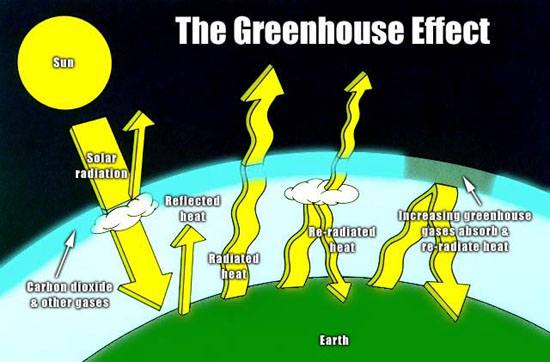 Greenhouse Effect - Squirt!!!