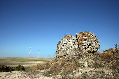 Cerro de La Torre. Restos