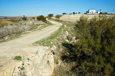 Camino del Puerto de Sta. María