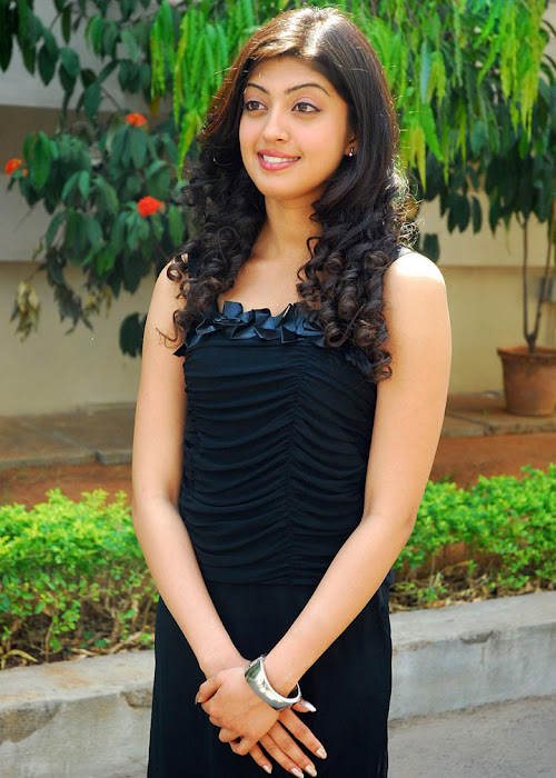praneetha exclusivie telungu movie bava praneetha cute stills