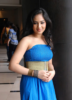 Nikesha Patel Latest Photo Stills 5