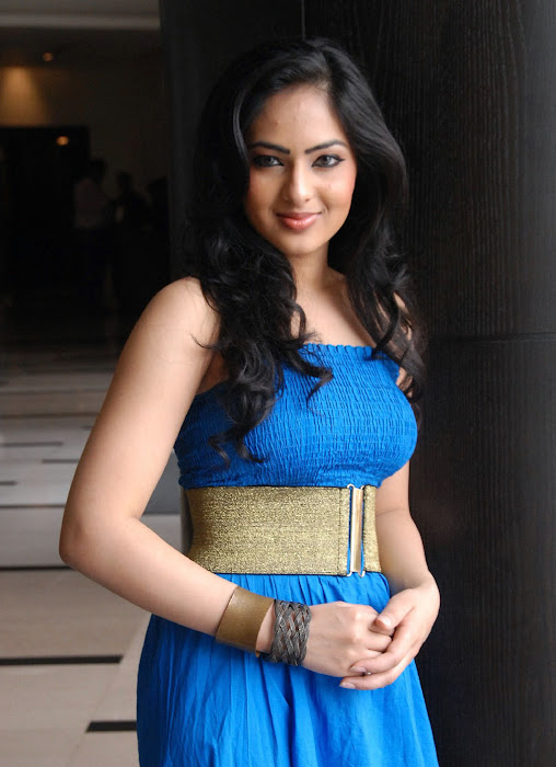 komaram puli heroine nikesha patel latest photos