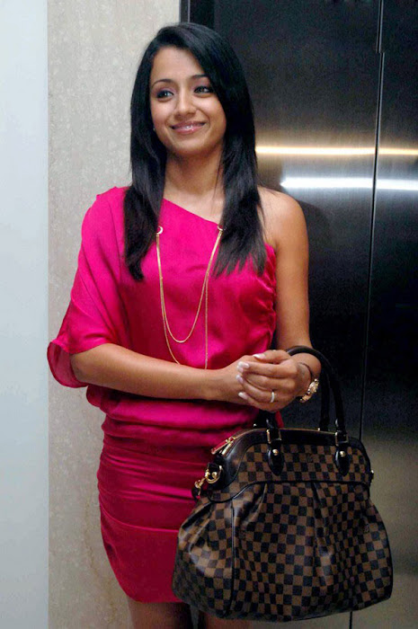 trisha spotted in pink at a event hot images