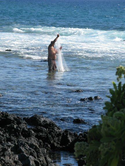 Search results for ancient hawaiian moon calendar 2014 for Hawaiian moon fish