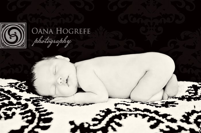 morningside newborn maternity photography