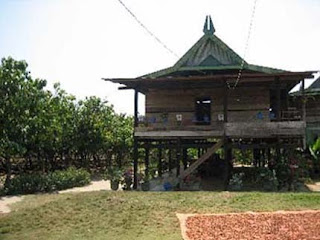 Rumah+Laikas-Sulawesi-Tenggara-traditional-house