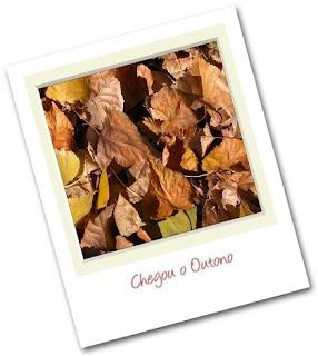 foto polaroid do outono