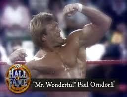 Paul Orndorff Injury
