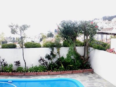 Jardinbio decoracion arriates biodinamico - Plantas para arriates ...