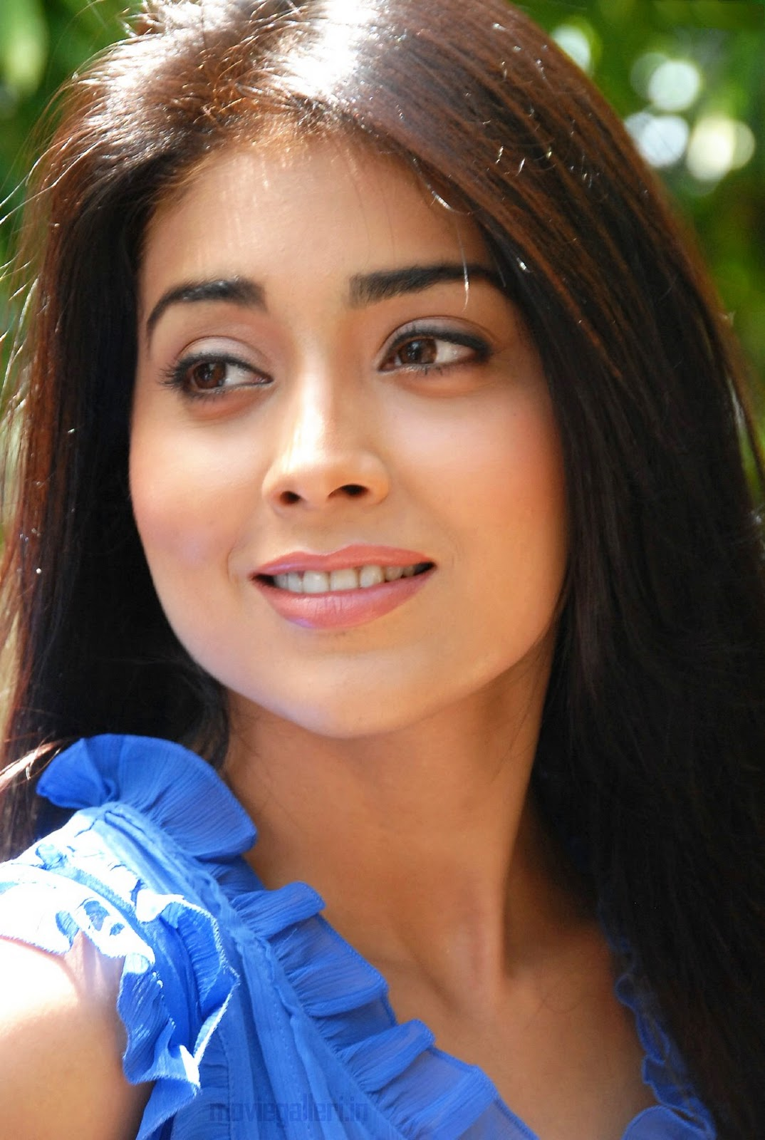 shriya saran | hd wallpapers (high definition) | free background