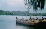 Ashtamudi Ramsar Site